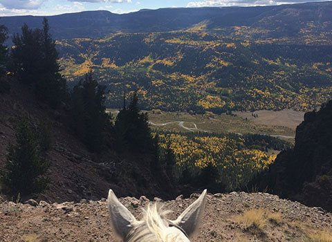 Overlooking the valley on horseback