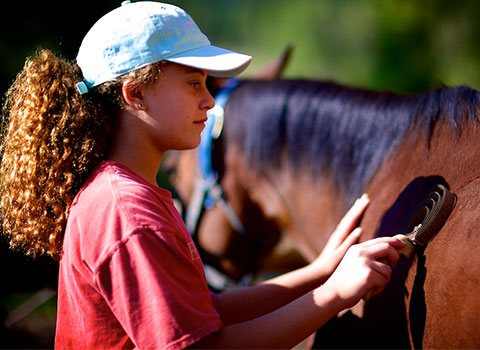Girl brushing her horse